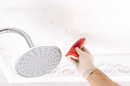 Person cleaning small mold stains on shower ceiling with gloves Фото со стока