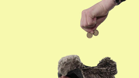 Throw a penny in your hat, help a person with money, finance, a homeless person asks for money.