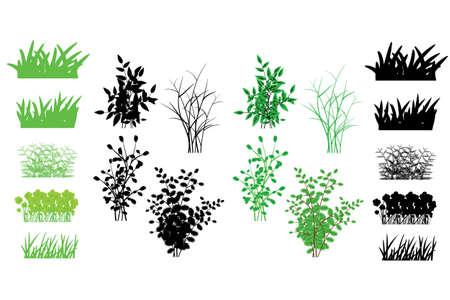 gazon, des arbustes