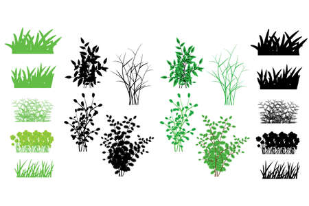 grass, shrubs Vector