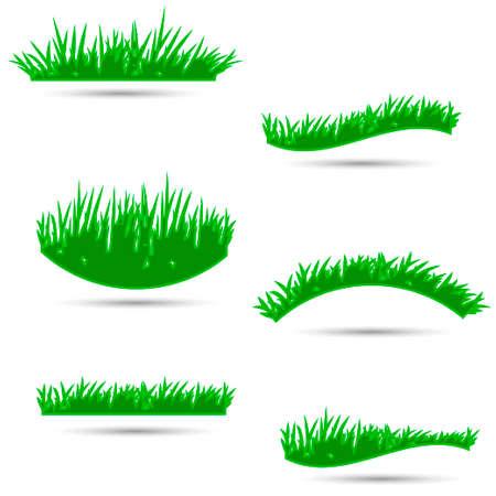 hedge trees: grass, shrubs