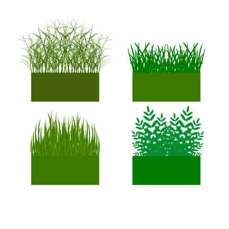 hedge trees: vector illustration. The background with the ability to edit