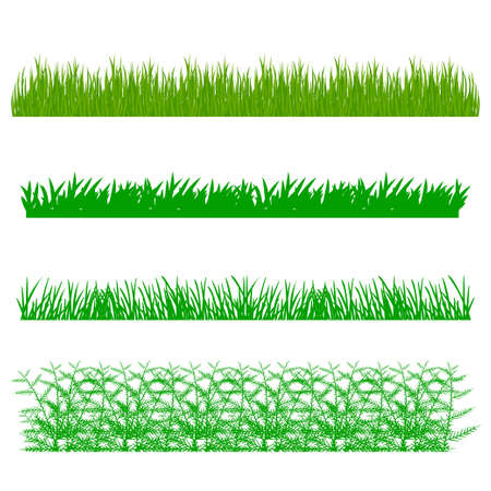 grass area: vector illustration. The background with the ability to edit