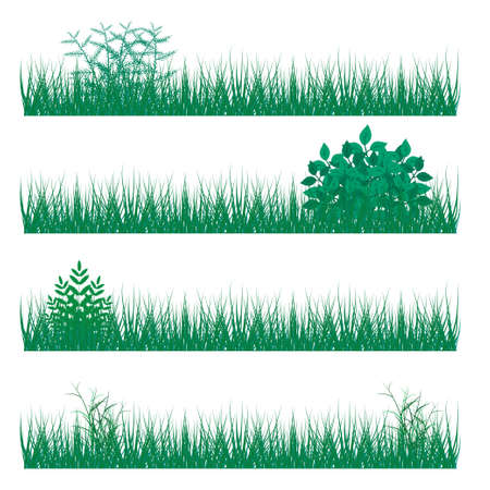 uncultivated: vector illustration. The background with the ability to edit