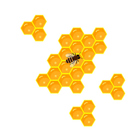 Bees and honey. honeycomb and sweet honey drips.