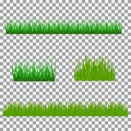 Set of grass vector illustration. Green grass and bushes Illustration