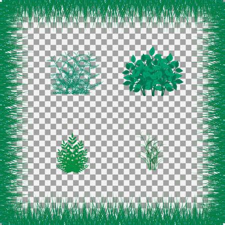 bushes: Set of grass vector illustration. Green grass and bushes Illustration