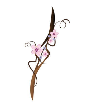 primavera: Ornament