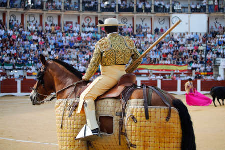Picador working during a bullfight