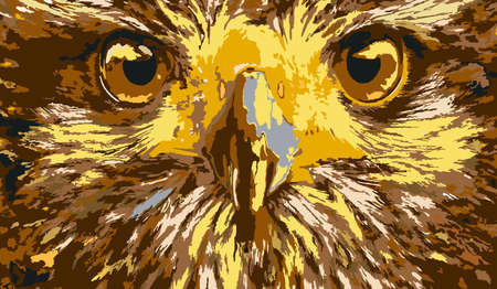 Traced image of the face of an eagle.