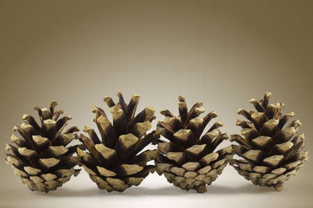 Set of pineapples on a brown background.