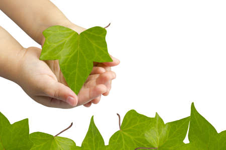 Hands of a child picking up a sheet to protect nature and care for our planet