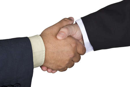 Picture of two businessmen shaking hands reaching an agreement  Stock Photo