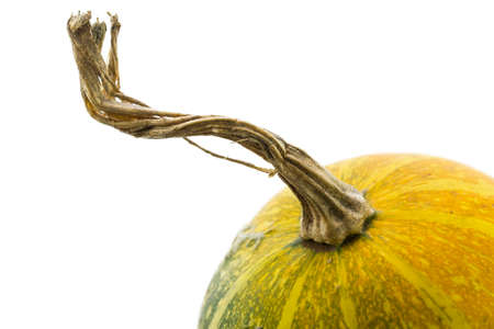 Close up to a small pumpkin on a white background.