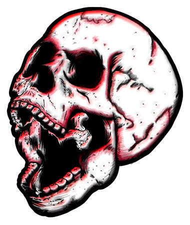 Illustration of a very expressive skull on a white background.
