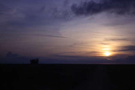 sunrise purple landscape