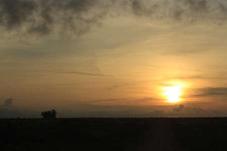 sunrise yellow landscape