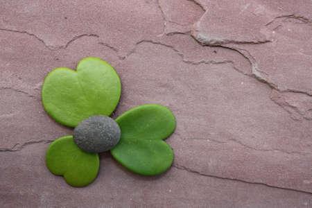 hoya heart tree on the rock Stock Photo - 17306355