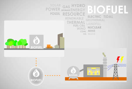 thermal power plant: energ�a biocombustible