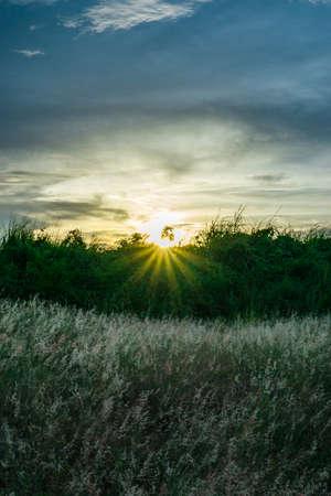 日没時に山フィールド 写真素材