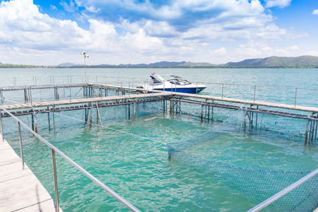 coop: The coop for feeding fish in east of Thailand sea.