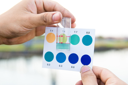 Worker use hands holding test tube with pH indicator comparing color to scale from water in shrimp pond Stock Photo