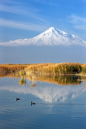two ducks: Mount Ararat mirrored in the lake where two ducks are duckling Stock Photo