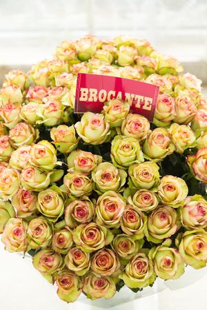 Grote bos beige en roze vintage rozen met naam label