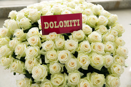 Dolomiti witte roos boeket met naamlabel