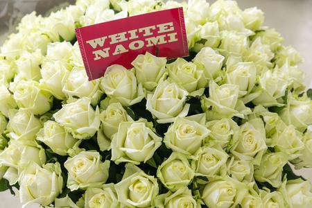 Bos van witte Naomi-rozen met naametiket