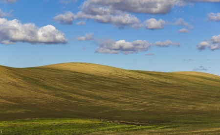 Plowed field with hills and some cloudes. photo