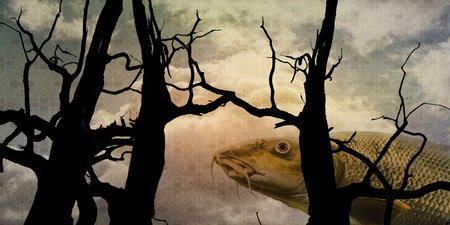 multycolored: Surrealistic composition with fish, trees and patterned sky.
