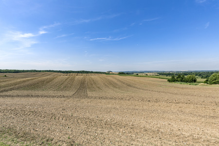 arable land: landscape with arable land forest and blue sky Stock Photo