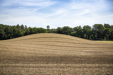 arable: landscape with arable land, hill and forest