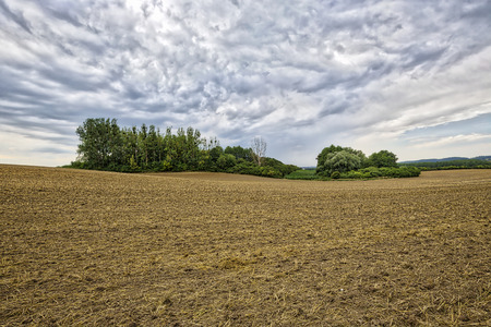 arable land: HDR landscape with arable land, forest and cloudscape
