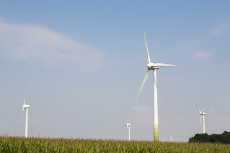 electric generating plant: wind wheels on blue sky with cornfield