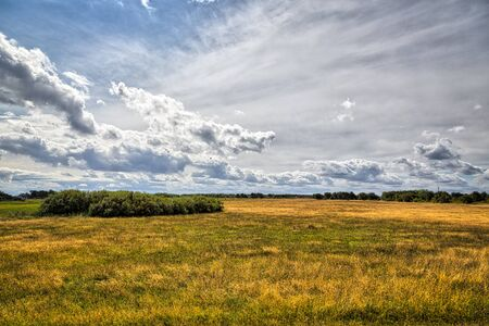 heath: HDR shot of Hiddensee heath with cloudscape