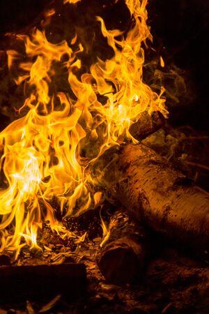 ognisko w nocy dla tła i kompozycji