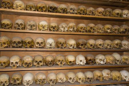 Shelf full of skulls