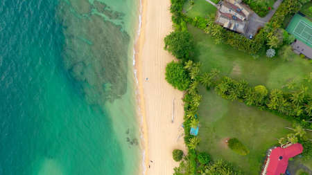 An aerian view of a beach of Hawai with palms Stockfoto