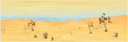 Texas Desert Background Image. Vector graphics