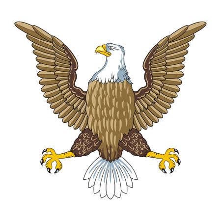 Amerikaanse zeearend Vector Vector Illustratie