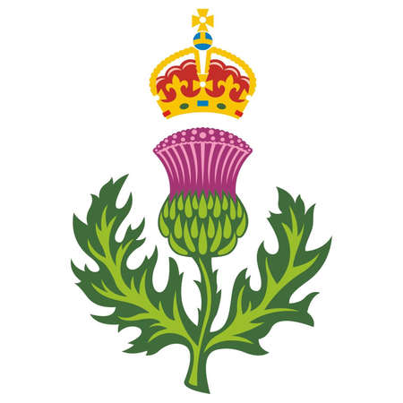 spiny: Scottish thistle  Badge of Scotland Vector  Illustration