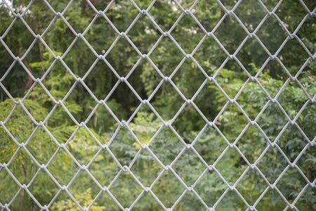 mesh: Wire mesh steel fence with nature background