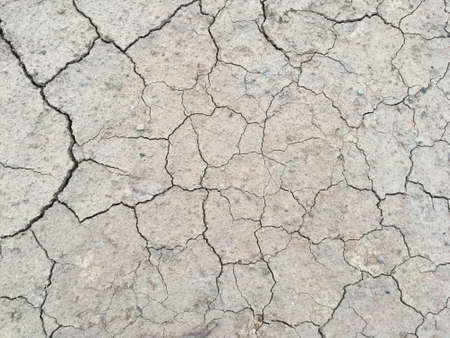 The surface of dry land with many cracks without a drop of water Stock Photo