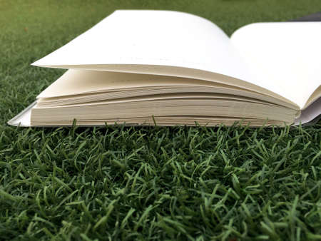 Opened book on green grass in the garden