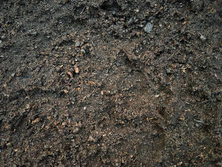 Realistic wet soil after raining top view texture background. Imagens