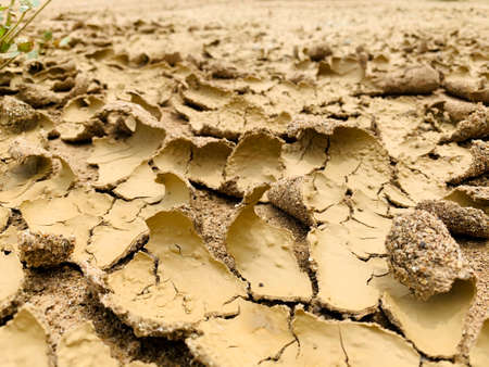 The surface of dry land with many cracks. Ground surface peel off from hot temperature. Imagens