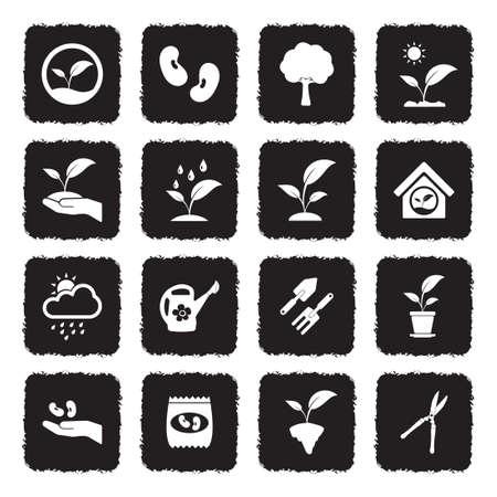 Icônes de la plante . design plat noir . illustration vectorielle Banque d'images - 107000335