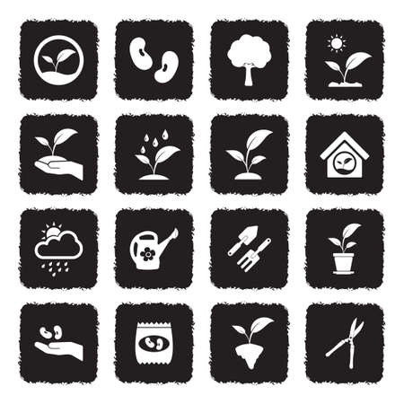 Plant Icons. Grunge Black Flat Design. Vector Illustration.